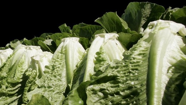 Some romaine lettuce back on shelves, but warning remains