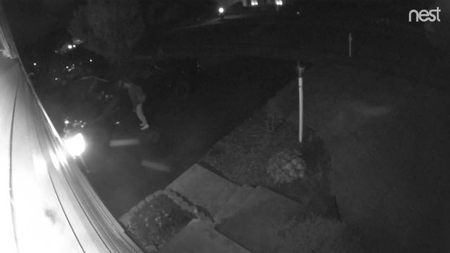 Thief steals items from cars in Dover, police search for suspect