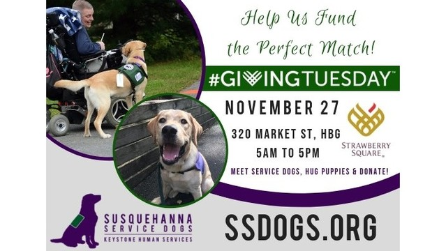 It's Giving Tuesday, think of the Susquehanna Services Dogs
